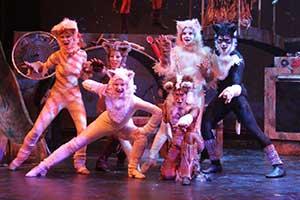 cats_2013-021.jpg