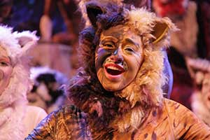 cats_2013-025.jpg